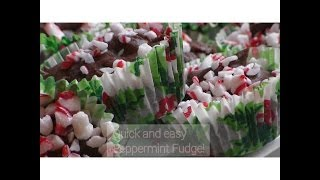 Quick And Easy Peppermint Fudge!