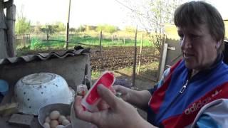 Деревенские будни Влог №22 // В детский сад // Посадили картофель