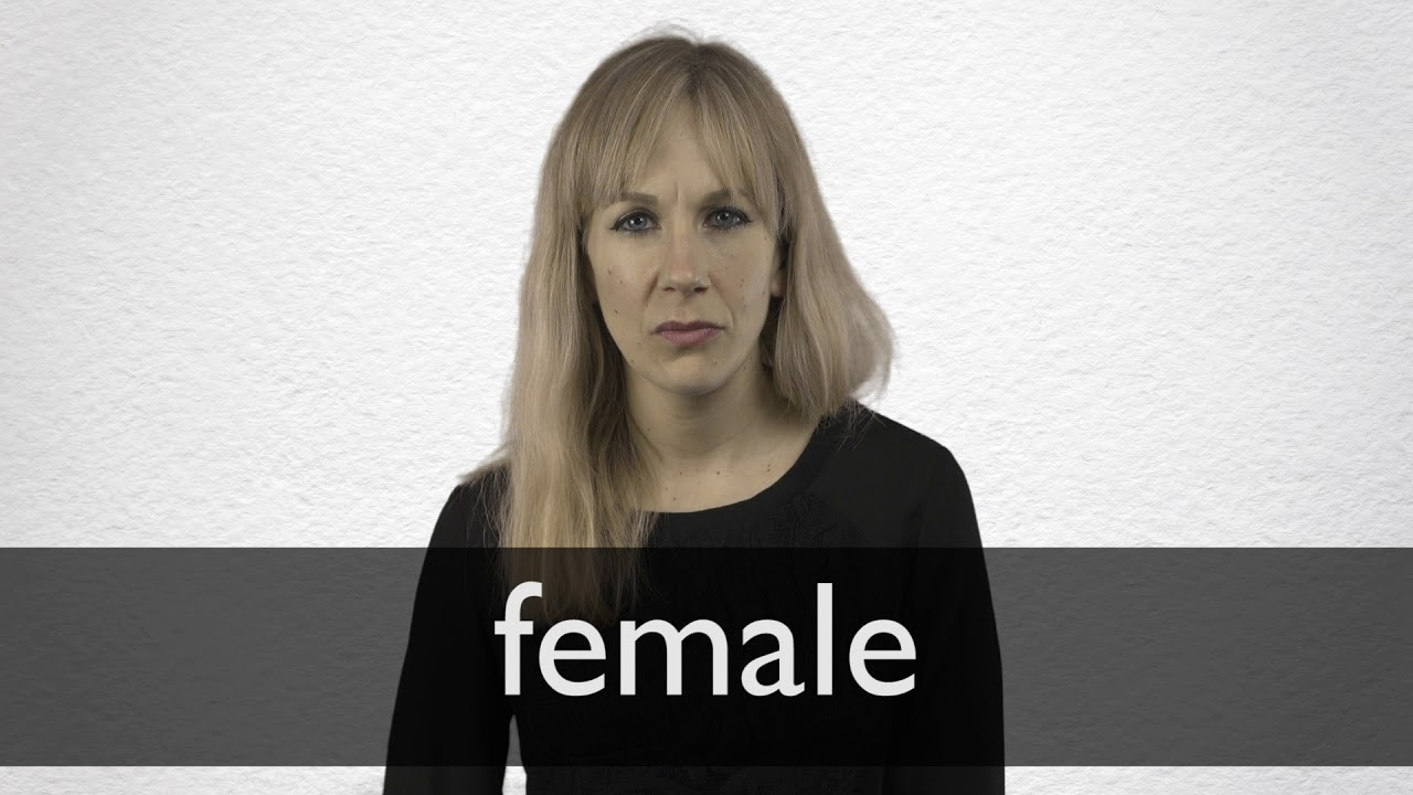 How to pronounce FEMALE in British English