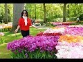 A DAY TRIP TO KEUKENHOF. A Romantic Holiday in spring time 2017.