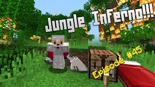 Minecraft Survival - How to find Ocelots [45]