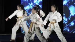 Karate Demo at 2017 Heroes Among Us Gala