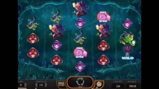 Видео-обзор игрового автомата Magic Mushrooms (Волшебные грибы) от производителя Yggdrasil Gaming