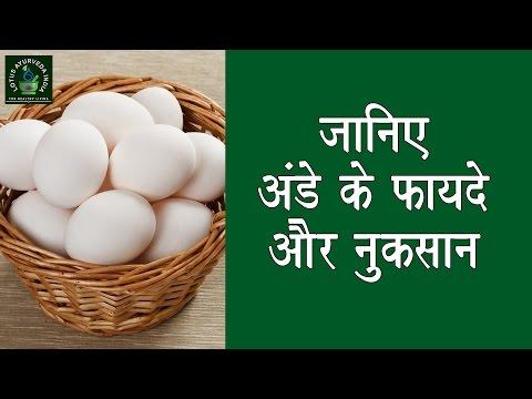 जानिए अंडे के फायदे और नुक्सान || Benefits and Side Effects of Eggs Mp3