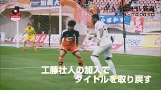 継続の広島と新しい新潟 明治安田生命J1リーグ 第1節 広島vs新潟は201...