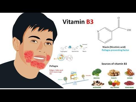 Vitamin B3: Niacin (sources,metabolism and deficiency)