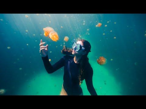 Why I freedive