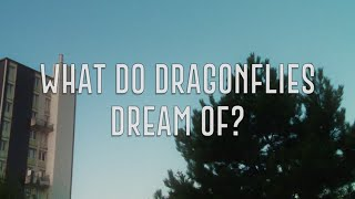 DE QUOI RÊVENT LES LIBELLULES      WHAT DO DRAGONFLIES DREAM OF      Teaser Trailer
