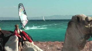 Animal Videocast - Andy Bubble Chambers Dahab Winter Training