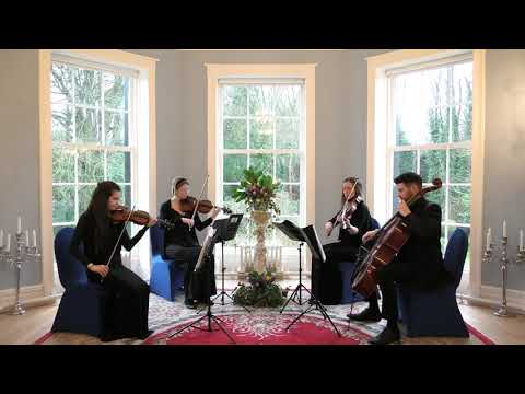 Arrival Of The Birds (The Cinematic Orchestra)Wedding String Quartet - 4K
