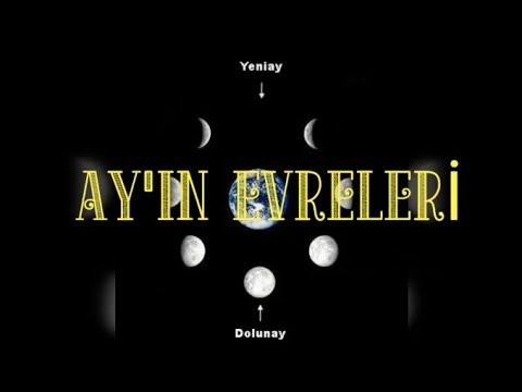 AYIN EVRELERİ REP ŞARKISI (THE RAP SONG OF PHASES OF THE MOON)