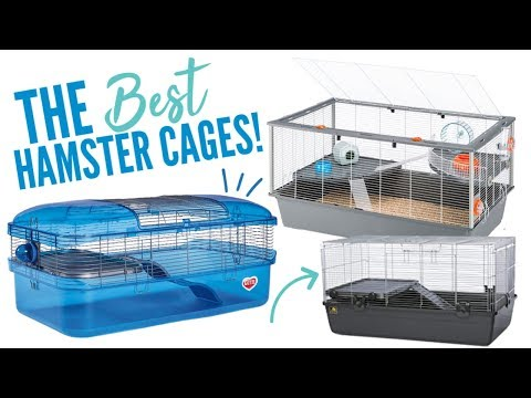 The BEST Hamster Cages Available!