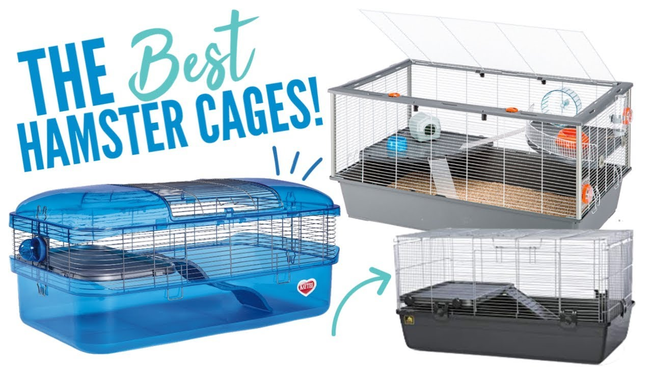 The Best Hamster Cages Available Youtube