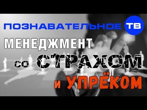 Менеджмент со страхом и упрёком (Познавательное ТВ, Андрей Иванов)