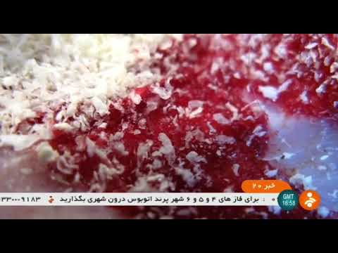 Iran made NanoTxicology Bio-Poison, Tehran University of Medical Sciences سم گياهي نانو زيست فناوري