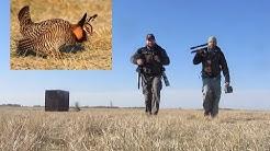 Wildlife Photography...A Minnesota Prairie Chicken Blind