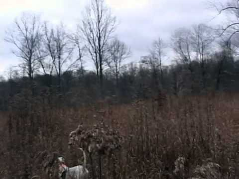 Outdoors with Bob Coker 2011 episode 1 Triple Springs