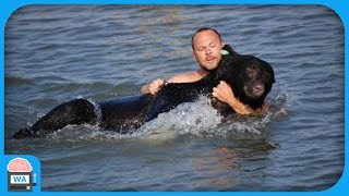 Dieser Bär ist kurz vor dem Ertrinken, doch ein Mann macht das Unglaubliche wahr!
