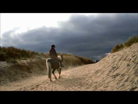 Curracloe Beach, Co Wexford, Ireland