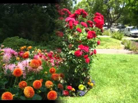 Small flower garden ideas - YouTube