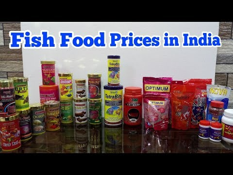 POPULAR FISH FOOD IN INDIA WITH PRICES