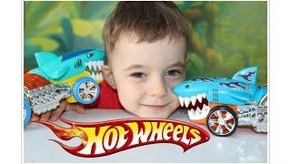 Hot Wheels vs Shark Ride Battle on Bogdan`s show