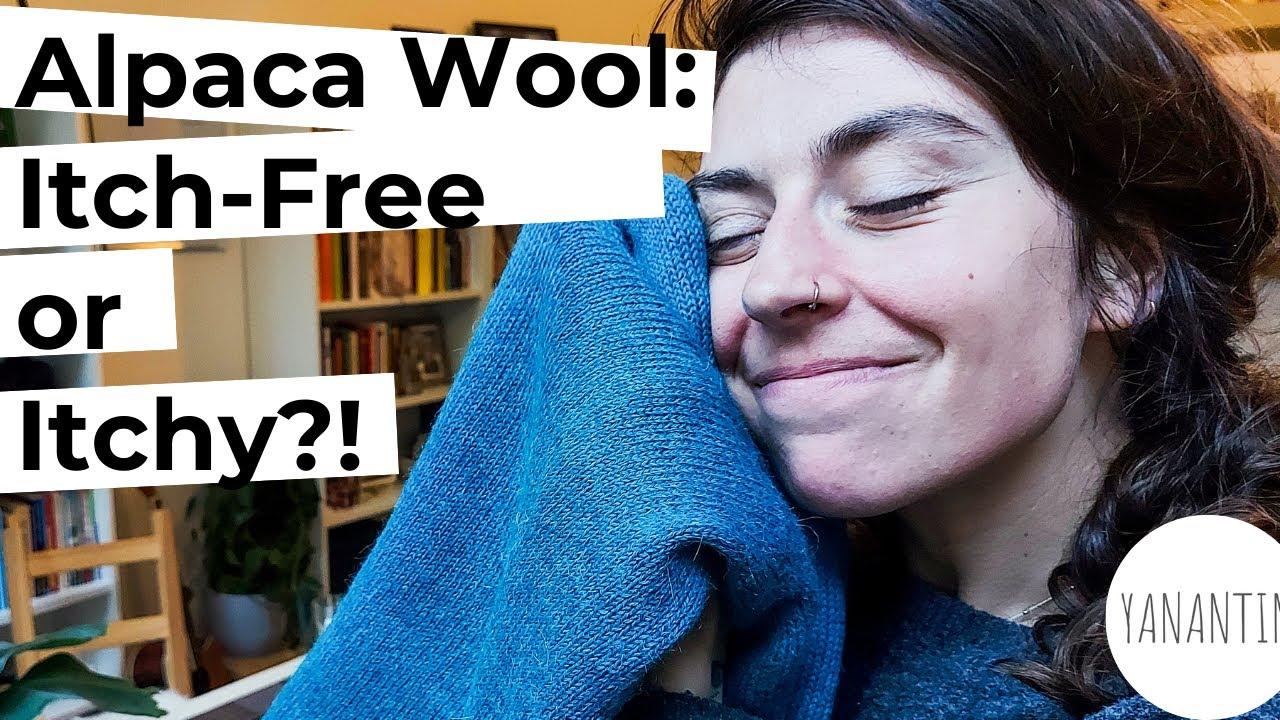 Is Alpaca Wool Itch Free Yanantin Alpaca