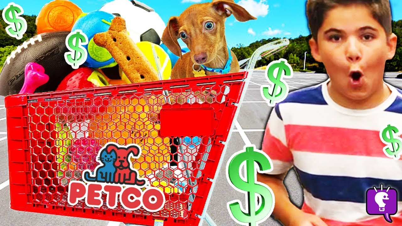 Buying My Dog Everything He Touches! Challenge at Petco by HobbyKidsTV