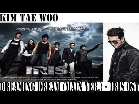 [MP3 DL] Kim Tae Woo - Dreaming Dream (IRIS OST)