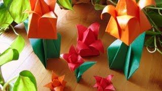 Origami ❀ Tulip ❀