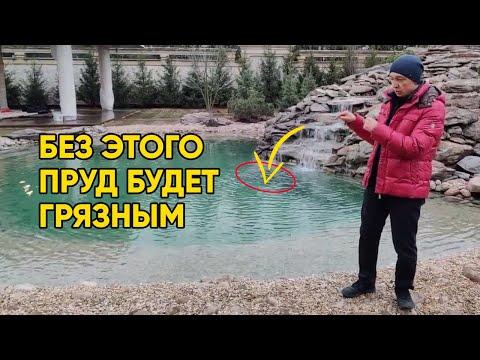 Как добиться прозрачной воды в пруду