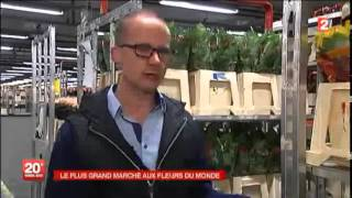 EXPORTATION : Le plus grand marché aux fleurs du monde