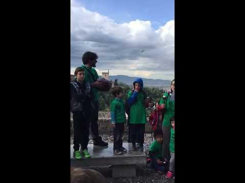 Manifiesto de las AMPAS que gestionan comedores escolares de ...