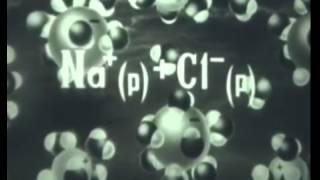 Теория электролитической диссоциации  Учебный фильм по химии(, 2015-08-19T09:34:59.000Z)