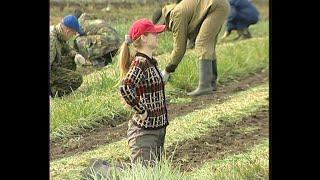 Студенты в колхозе. Уборка лука, 2004 год