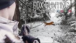 NH: Kettujahtia ajokoirilla | Fox Hunting with Hounds | 2020