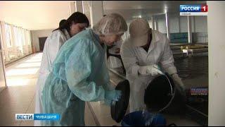 Специалисты Россельхознадзора проверили, как функционируют рыбные хозяйства Чувашии