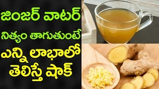 Amazing Health Benefits of GINGER WATER | Health Tips to REDUCE FAT and WEIGHT | VTube Telugu