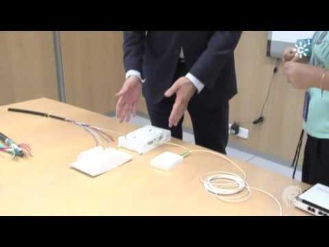 En Red - Las ventajas de la fibra óptica en el hogar