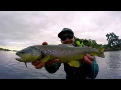 Fly Fishing on the Yellowstone
