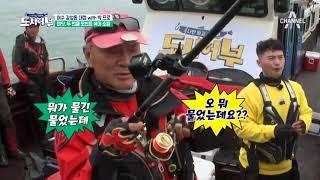 두둥! '마닷-더콰' 두 번째 포인트에서 복어 낚다☆ 여수는 복어파티~♪ thumbnail