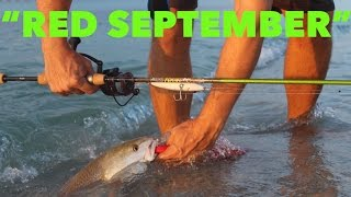 Repeat youtube video BEACH FISHING -