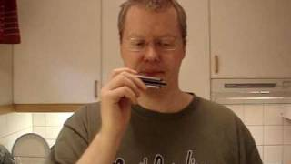 Rock Harmonica Lessons: House of the Rising Sun (With Tabs)