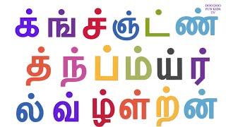 தமிழ் மெய் எழுத்துக்கள் | க் ங் ச் ஞ் பாடல் | க்ங்ச்ஞ் | Kids Tamil alphabets | children learning