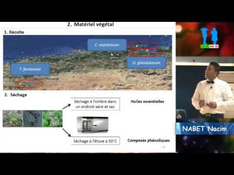Soutenance de doctorat en sciences par NABET Nacim