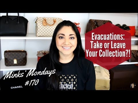 Minks' Mondays #170 | Evacuations: Take or Leave Your Collection?!