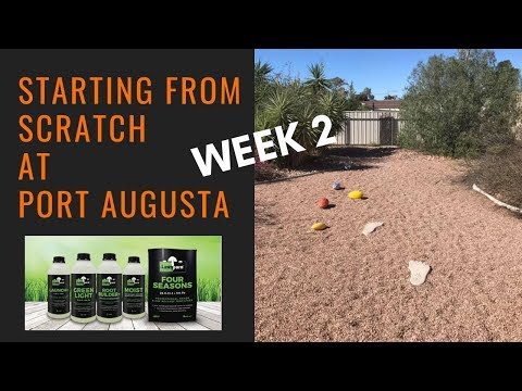 Starting from Scratch at Port Augusta. Week 2