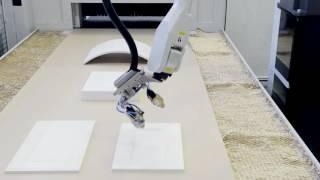 Антропоморфный робот с 6 осями