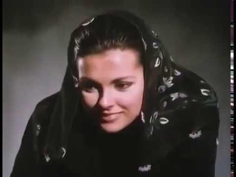 3 Серия Королек птичка певчая /1986 Calikusu