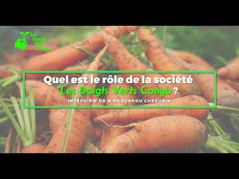 Quel Avenir pour l'Agriculture au Congo ?? PubliReportage Les Doigts Verts Congo